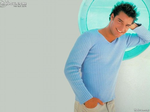 http://kamikazeegirl.files.wordpress.com/2010/03/ricky-martin.jpg