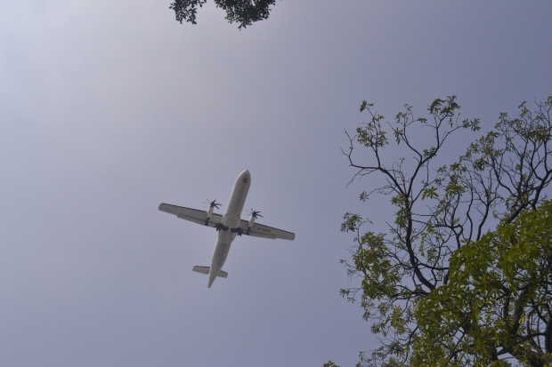 planes always fly overhead the Taipei Expo Park due to its proximity to the Taipei Airport (the domestic one)