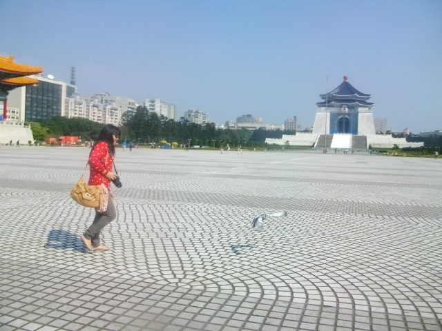 My sister chasing a hapless fat pigeon
